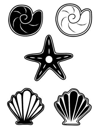 inhabitants: abitanti del mare impostati, conchiglie e stelle in bianco e nero