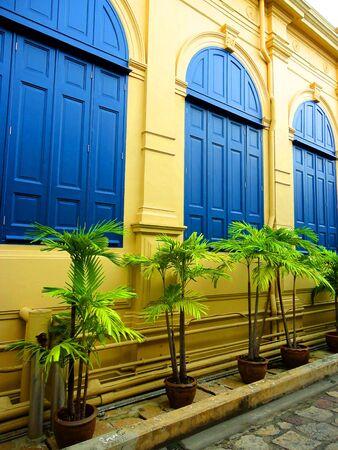 palmtrees:         Palmtrees