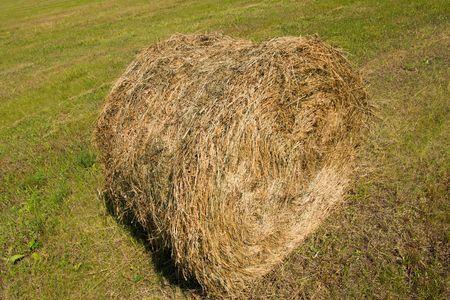 haymow: rural scene, haystacks in the field