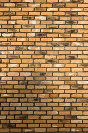 brown brick wall background, texture Stock Photo - 3853566