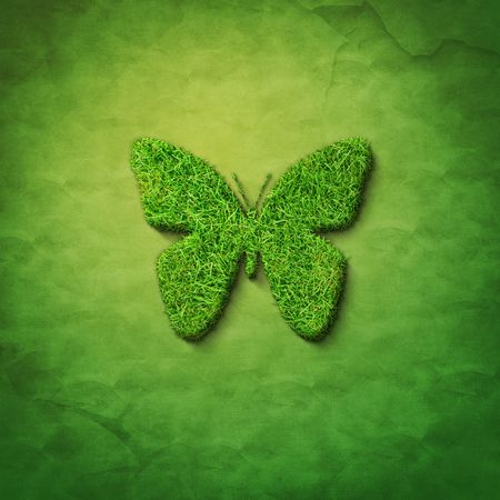 shadowgraph: grass butterfly shape on green sackcloth
