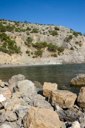 rocky mountain juniper: stone coast of black sea, sunny day, crimea Stock Photo