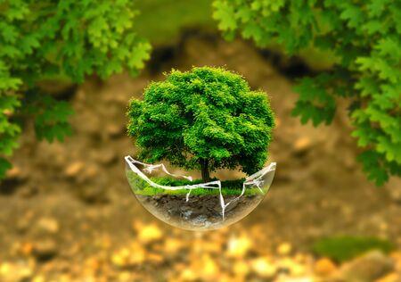 levitate: levitate tree Stock Photo