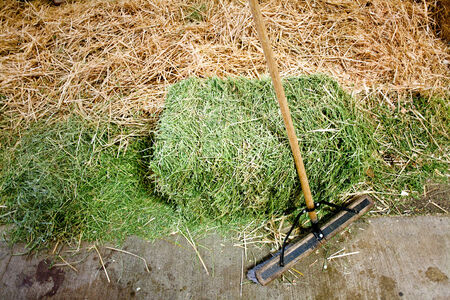 long handled: long handled scrub brush with square hay bale