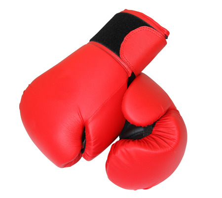 combative: red boxing gloves isolated  isolated in white