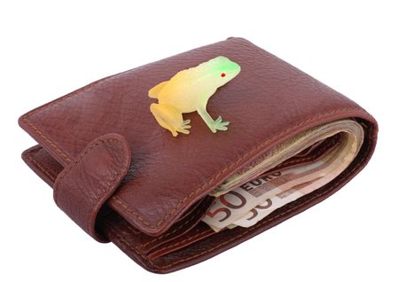 wallet with toy frog isolated on white background Stock Photo - 3427991
