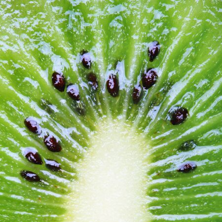 topdown: juicy green kiwi