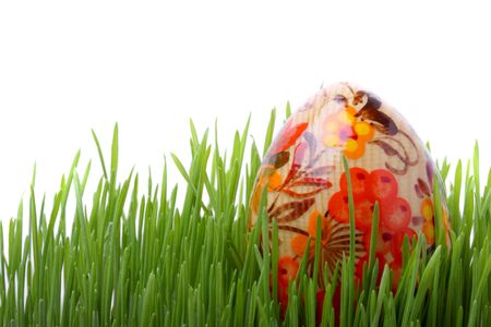 Easter egg in green grass isolated on white background photo