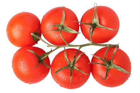 Ripe cherry tomatoes on vine isolated on white background photo
