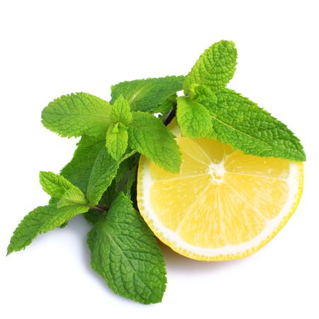 Mint and lemon isolated on white background photo