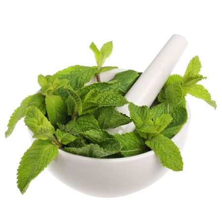 Mortar with mint isolated on white background photo
