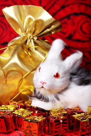 Christmas gifts with toy rabbit photo