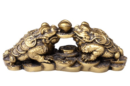 Two chinese feng shui frogs with coins. Isolated on white background photo