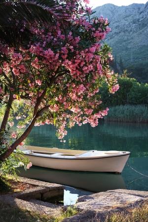 Vertical: Barco sobre el r�o Ombla cerca de Rozat, Croacia Foto de archivo