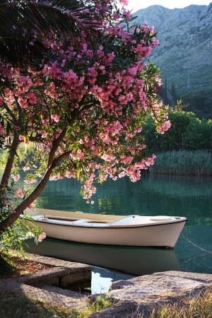 river banks: Boat on Ombla river near Rozat, Croatia