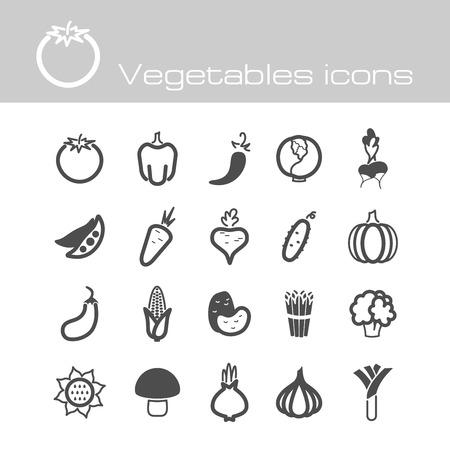 The modern icons vegetables set