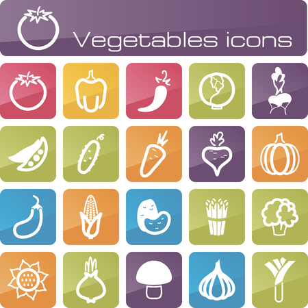 The modern icons vegetables set