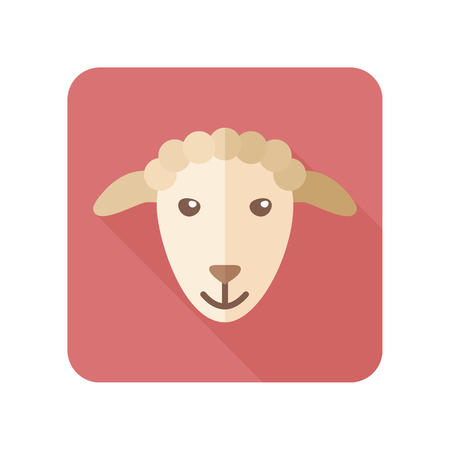 mutton: Sheep flat icon with long shadow