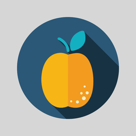 apricot: Apricot flat icon with long shadow
