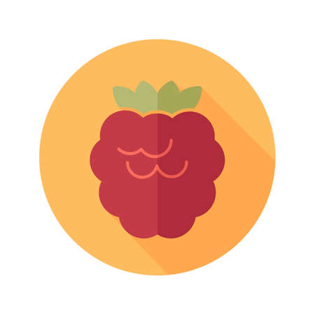 dewberry: Raspberry flat icon with long shadow
