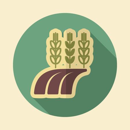 barley field: Ears of Wheat, Barley or Rye on field retro flat icon with long shadow Illustration