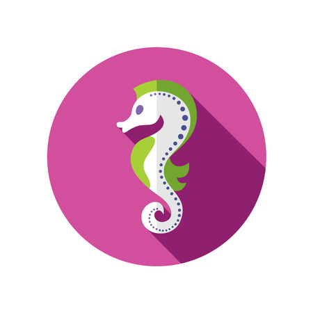 horsefish: Sea Horse flat icon with long shadow Illustration