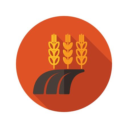 barley field: Ears of Wheat, Barley or Rye on field flat icon with long shadow, eps 10