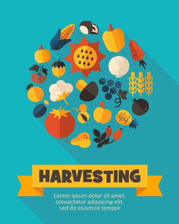 vegetarianism: Harvest fruits and vegetable poster. Vector illustration Illustration