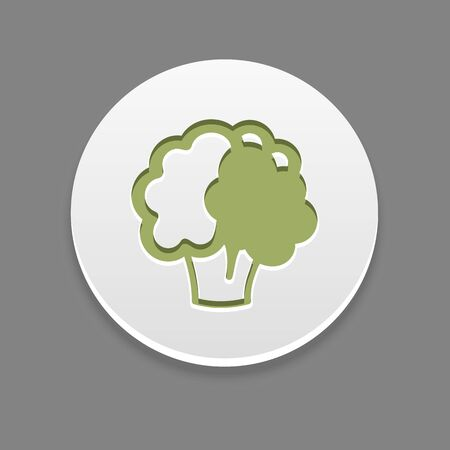 cauliflower: Cauliflower icon. Vegetable vector illustration,