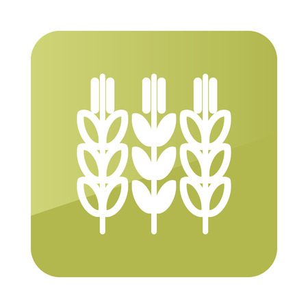 yield sign: Spikelets of wheat icon outline. Field. Farm. Vector illustration