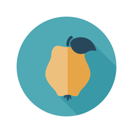 Quince flat icon. Tropical fruit. Illustration