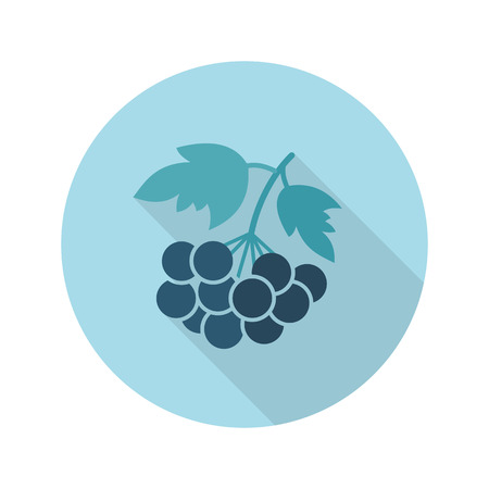 ashberry: Rowan branch flat icon. Berry fruit. Illustration