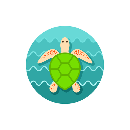 amphibia: Sea turtle vector icon.