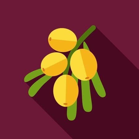 argousier: Branche de baies argousier icône plat. fruits Berry. Illustration