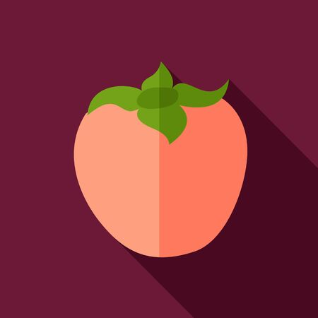 persimmon: Persimmon flat icon. Tropical fruit.