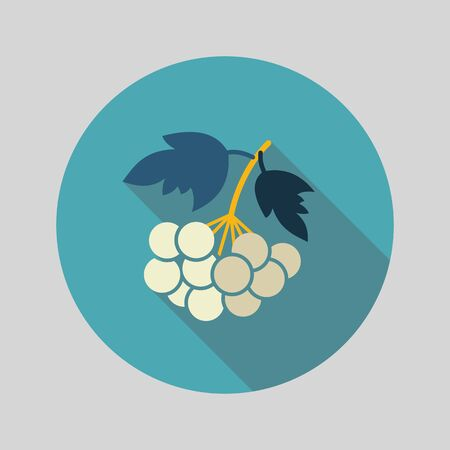 ashberry: Rowan branch flat icon. Berry fruit. Vector illustration, eps 10 Illustration