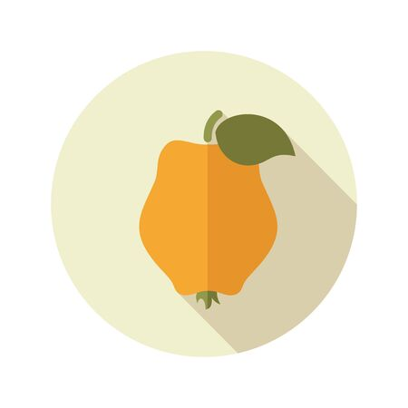 quince: Quince flat icon. Tropical fruit. Vector illustration, eps 10