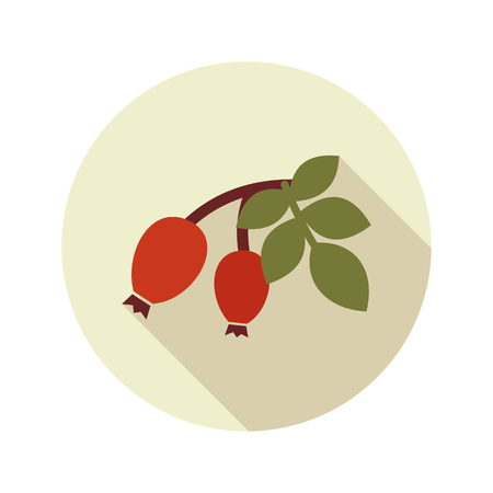 dogrose: Rosehip branch with red berries flat icon. Berry fruit. Vector illustration, eps 10 Illustration
