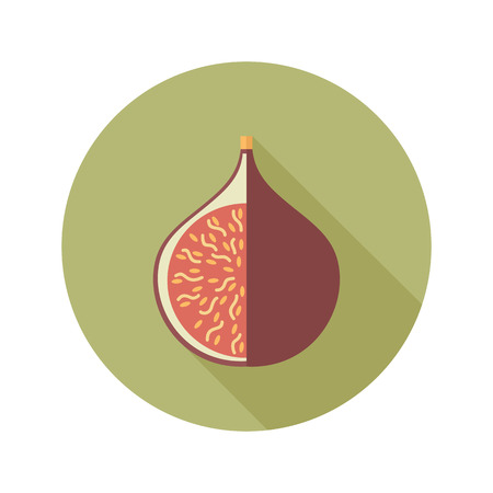 fig: Fig flat icon. Tropical fruit. Illustration