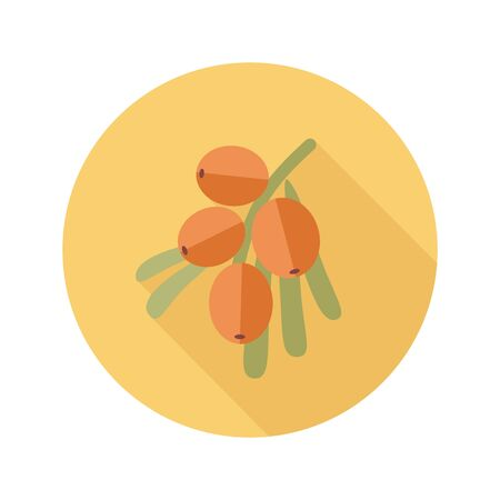 buckthorn: Branch of sea buckthorn berries flat icon. Berry fruit. Illustration