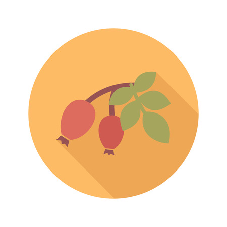 berry fruit: Rosehip branch with red berries flat icon. Berry fruit.