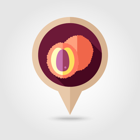 Lychee flat vector pin map icon. Map pointer. Map markers. Tropical fruit.