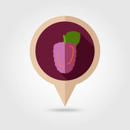 dewberry: Blackberry bramble flat vector pin map icon. Map pointer. Map markers. Berry fruit.