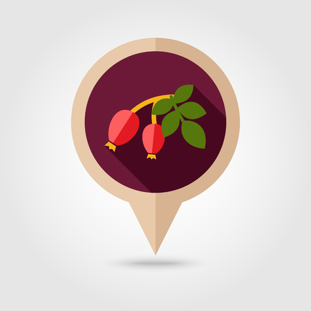 red berries: Rosehip branch with red berries flat vector pin map icon. Map pointer. Map markers. Berry fruit. Illustration
