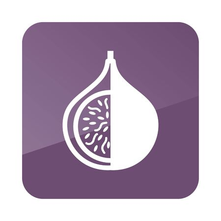fig: Fig outline icon. Tropical fruit. Vector illustration,