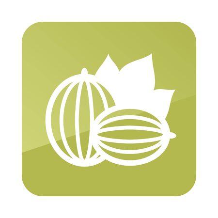 Gooseberry outline icon. Berry fruit. Vector illustration,