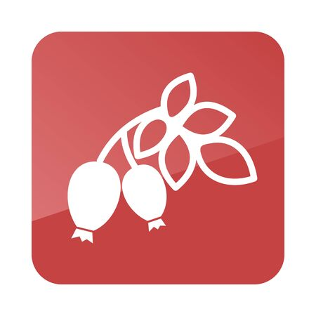 rose hips: Rosehip branch with red berries outline icon. Berry fruit. Vector illustration, Illustration