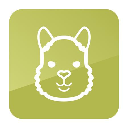 alpaca animal: Lama alpaca guanaco icon. Animal head vector symbol Illustration
