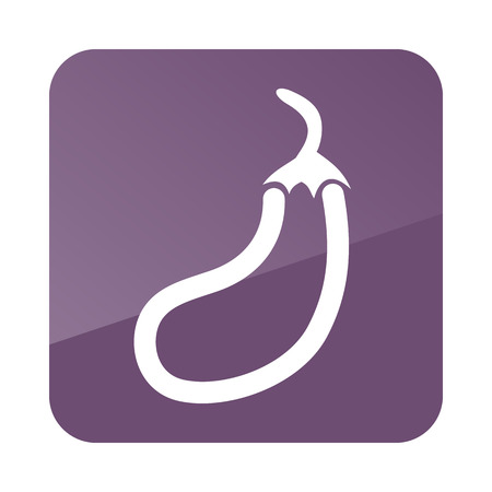 petiole: Eggplant outline icon. Vegetable vector illustration eps 10
