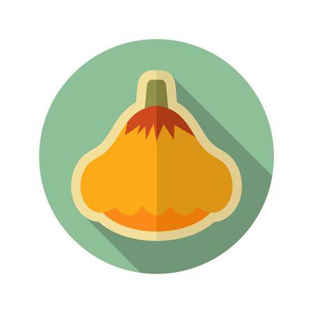 squash: Pattypan squash flat icon. Illustration